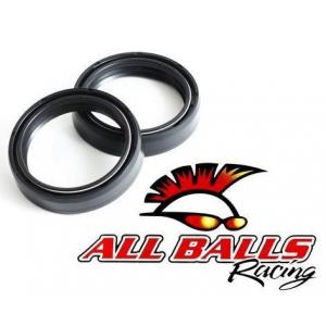 Guferá do vidlíc All Balls 43 x 54 x 11